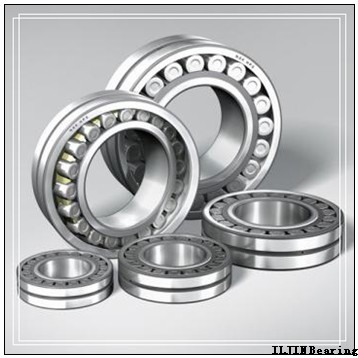 ILJIN IJ223041 angular contact ball bearings