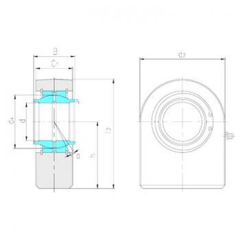 LS SFEW100ES plain bearings