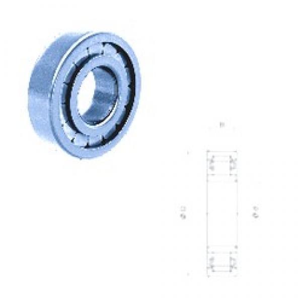 15 mm x 35 mm x 11 mm  Fersa NU202FM/C3 cylindrical roller bearings #2 image